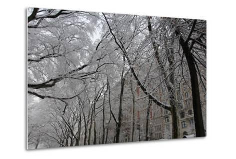 Snow Covered Trees Apartments-Robert Goldwitz-Metal Print