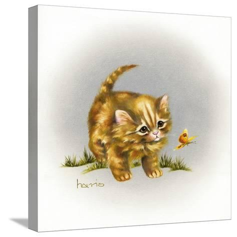 Fraidy Cat-Peggy Harris-Stretched Canvas Print