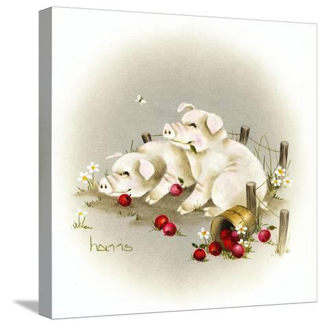 Piggin' Out-Peggy Harris-Stretched Canvas Print
