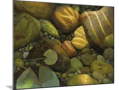 The Garden Pond-Stephen Stavast-Mounted Giclee Print