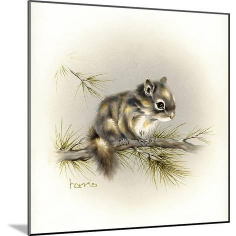Tattle-Tail Baby-Peggy Harris-Mounted Giclee Print