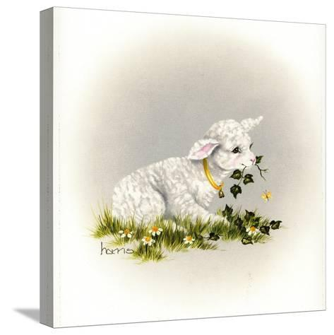 Little Lambsy Divey-Peggy Harris-Stretched Canvas Print