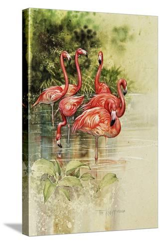 Flamingo Paper-Tim Knepp-Stretched Canvas Print