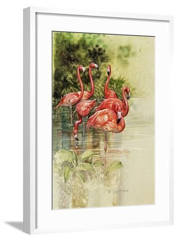 Flamingo Paper-Tim Knepp-Framed Art Print