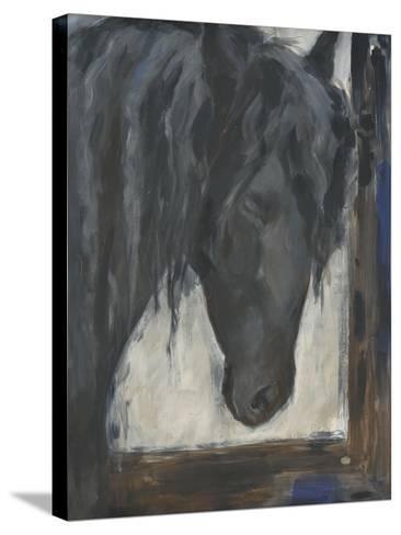 Hilandero-Solveiga-Stretched Canvas Print