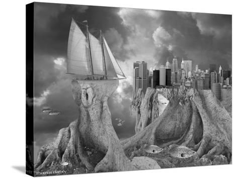 Fish out of Water-Thomas Barbey-Stretched Canvas Print