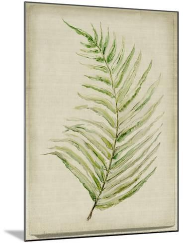 Fern 1-Symposium Design-Mounted Giclee Print