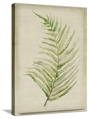 Fern 1-Symposium Design-Stretched Canvas Print