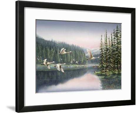 Swans at Sunrise-Wanda Mumm-Framed Art Print