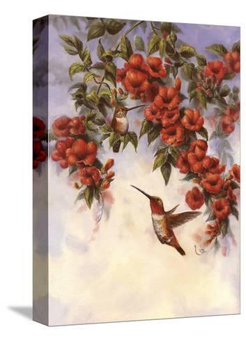 Hummingbird E-Wanda Mumm-Stretched Canvas Print