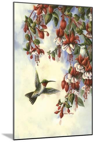 Hummingbird D-Wanda Mumm-Mounted Giclee Print