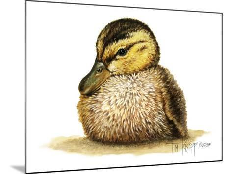 Duckling-Tim Knepp-Mounted Giclee Print