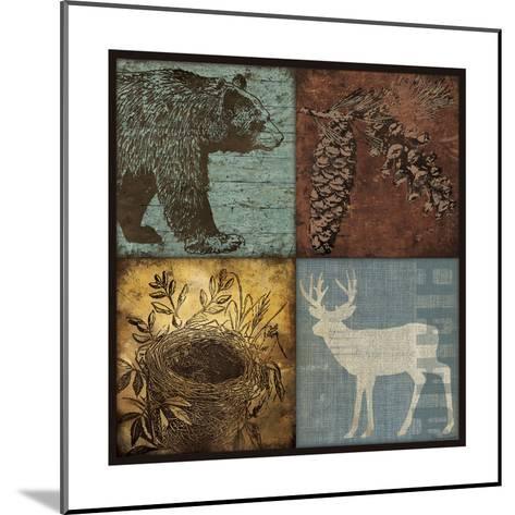 Lodge 4 Patch III-Stephanie Marrott-Mounted Giclee Print