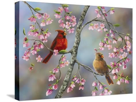 Spring Cardinals-Sarah Davis-Stretched Canvas Print