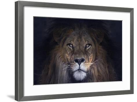 Leo-SD Smart-Framed Art Print