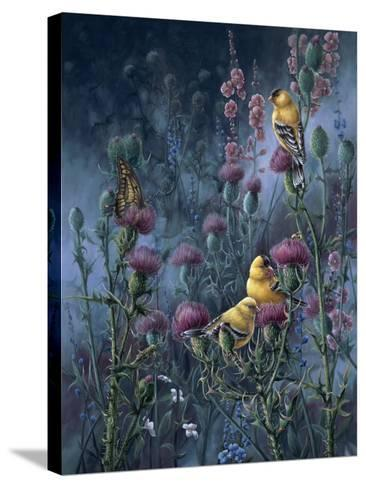Wings of Gold-Wanda Mumm-Stretched Canvas Print
