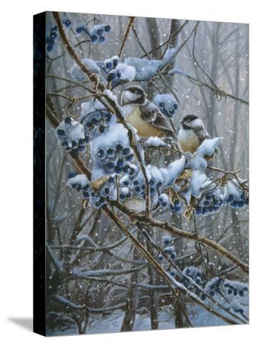 Snowy Treasure-Wanda Mumm-Stretched Canvas Print