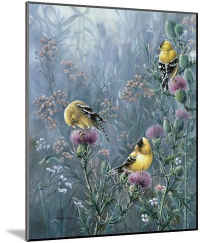 Summer Gold-Wanda Mumm-Mounted Giclee Print