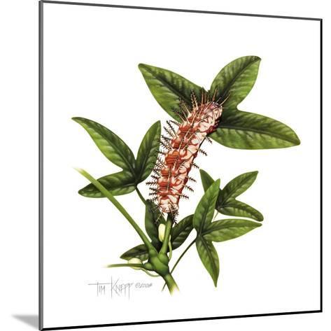 Julia Caterpillar-Tim Knepp-Mounted Giclee Print
