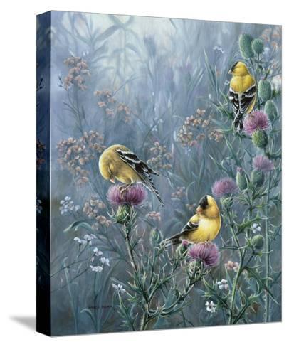 Summer Gold-Wanda Mumm-Stretched Canvas Print