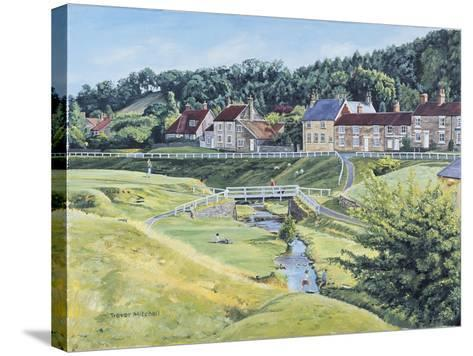 Hutton Le Hole-Trevor Mitchell-Stretched Canvas Print