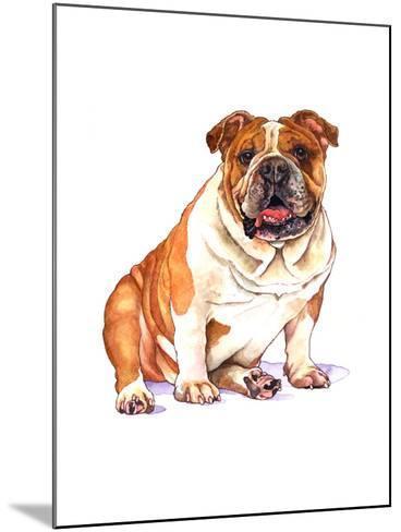 Bulldog-Wendy Edelson-Mounted Giclee Print
