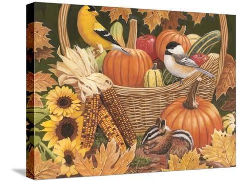 Harvest Basket-William Vanderdasson-Stretched Canvas Print