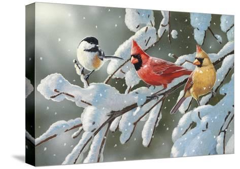 Heavy Snowfall-William Vanderdasson-Stretched Canvas Print