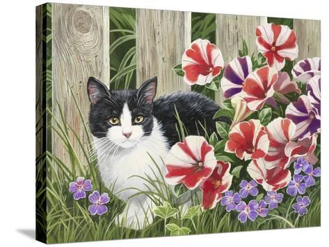 Minnie in the Petunias-William Vanderdasson-Stretched Canvas Print