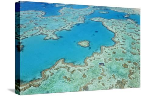 Aerial View of Heart Reef, Great Barrier Reef, Queensland, Australia-Peter Adams-Stretched Canvas Print