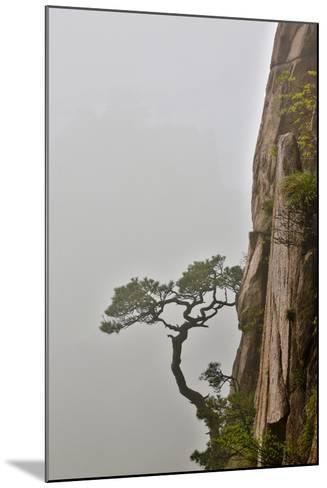Yellow Mountains a UNESCO World Heritage Site-Darrell Gulin-Mounted Photographic Print