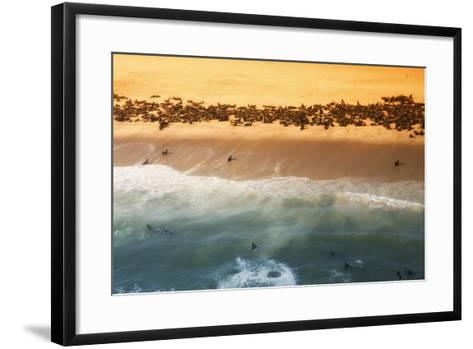 Skeleton Coast, Namibia. Abstract View of a Colony of Cape Fur Seals-Janet Muir-Framed Art Print
