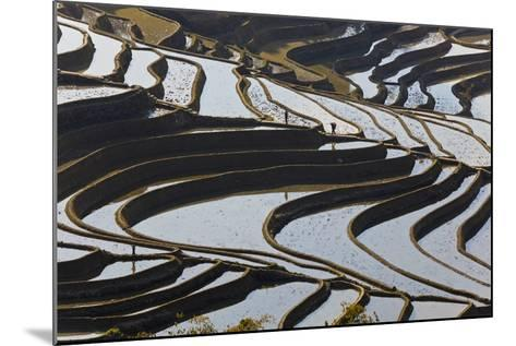 Reflections Off Water Filled Rice Terraces, Yuanyang, Honghe, China-Peter Adams-Mounted Photographic Print