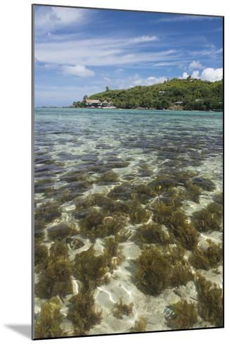 Seychelles, Mahe, St. Anne Marine NP. View of Moyenne Island-Cindy Miller Hopkins-Mounted Photographic Print