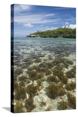 Seychelles, Mahe, St. Anne Marine NP. View of Moyenne Island-Cindy Miller Hopkins-Stretched Canvas Print