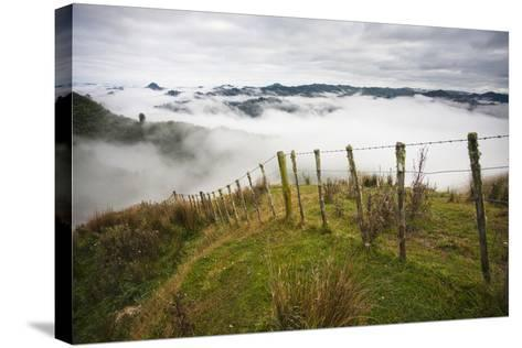 Farmlands in Whakahoro, in the Whanganui NP of New Zealand-Micah Wright-Stretched Canvas Print