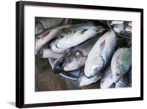 Myanmar. Bagan. Nyaung U. Fish for Sale in the Market-Inger Hogstrom-Framed Art Print
