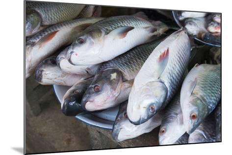 Myanmar. Bagan. Nyaung U. Fish for Sale in the Market-Inger Hogstrom-Mounted Photographic Print