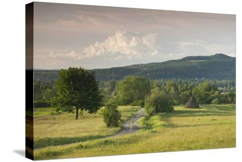 Romania, Maramures Region, Sarasau, Country Road by Ukrainian Frontier-Walter Bibikow-Stretched Canvas Print
