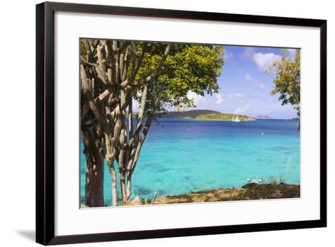 Us Virgin Island, St John. View of St Thomas Sailboats and Snorkelers-Trish Drury-Framed Art Print