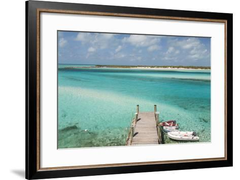 Bahamas, Exuma Island, Cays Land and Sea Park. Pier and Moored Boats-Don Paulson-Framed Art Print