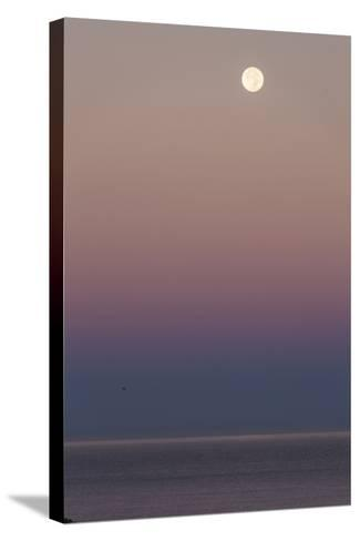 USA, California, Moonset over Pacific Ocean-John Ford-Stretched Canvas Print
