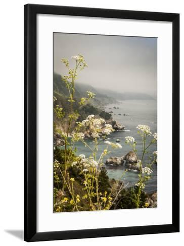 California, Big Sur, View of Pacific Ocean Coastline with Cow Parsley-Alison Jones-Framed Art Print
