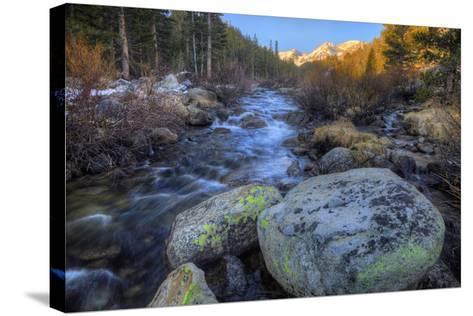 USA, California, Sierra Nevada Range. Rock Creek Landscape-Dennis Flaherty-Stretched Canvas Print