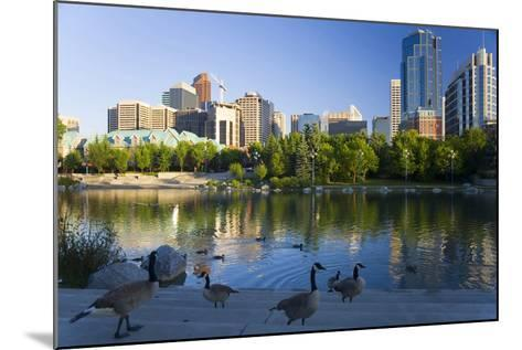 Canada Geese Resting at a Lake with Skyline, Calgary, Alberta, Canada-Peter Adams-Mounted Photographic Print