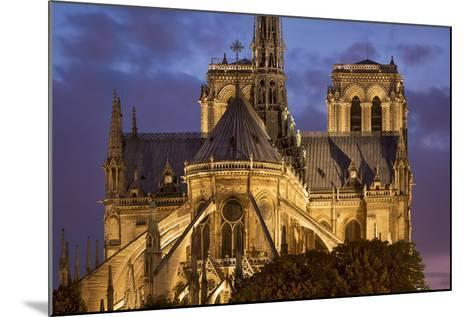 Cathedral Notre Dame, Paris, France-Brian Jannsen-Mounted Photographic Print