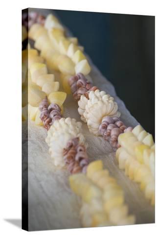 French Polynesia, Island of Mangareva, Rikitea. Mixed Seashell Lei-Cindy Miller Hopkins-Stretched Canvas Print