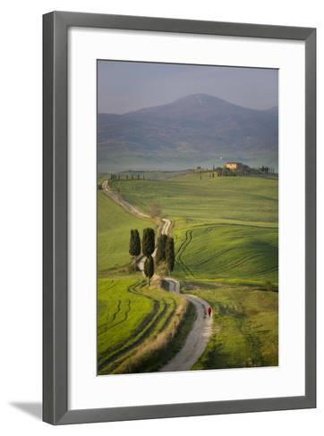 Cypress Trees and Winding Road to Villa Near Pienza, Tuscany, Italy-Brian Jannsen-Framed Art Print