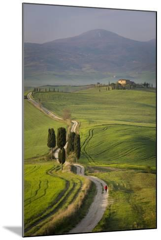 Cypress Trees and Winding Road to Villa Near Pienza, Tuscany, Italy-Brian Jannsen-Mounted Photographic Print