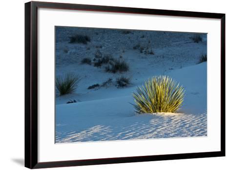 Sand Patterns, Yucca, White Sands Nm, Alamogordo, New Mexico-Michel Hersen-Framed Art Print